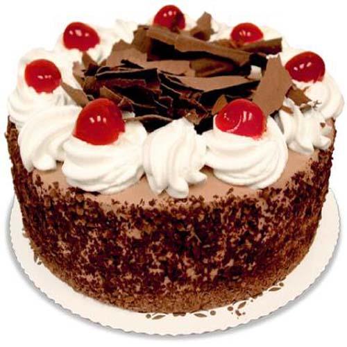 Paris Dessert Truffle Cake