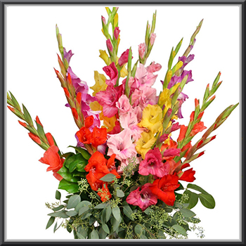 Buy Flowers Online Send Flowers To India